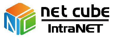 img-Netcube IntraNet-02